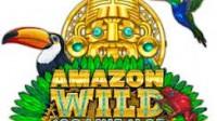 amazonwild