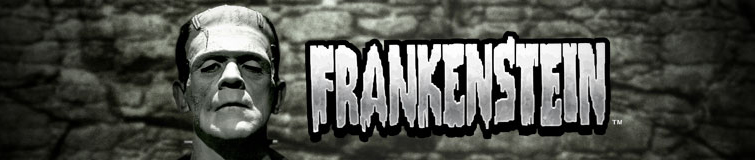 Frankenstein-long logo