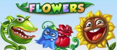 flowers - liten