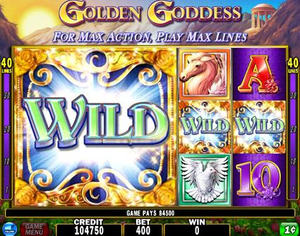 Golden-goddess wild