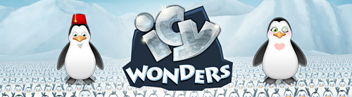 icy-wonders long front
