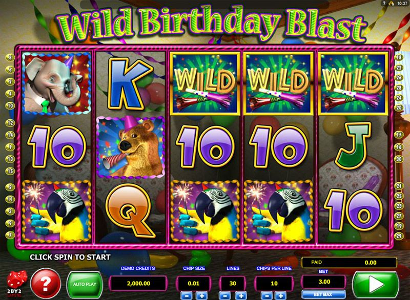 wild-birthday-blast-wilds
