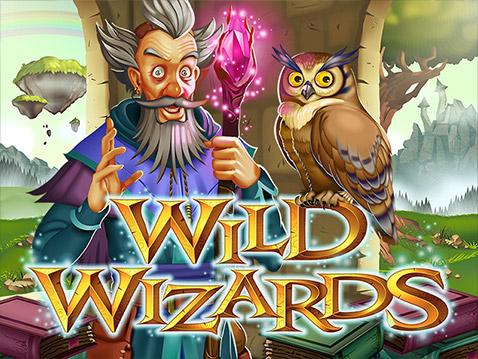 wild-wizards-logo-better